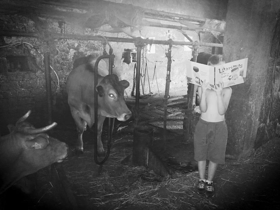 Lectura en la granja